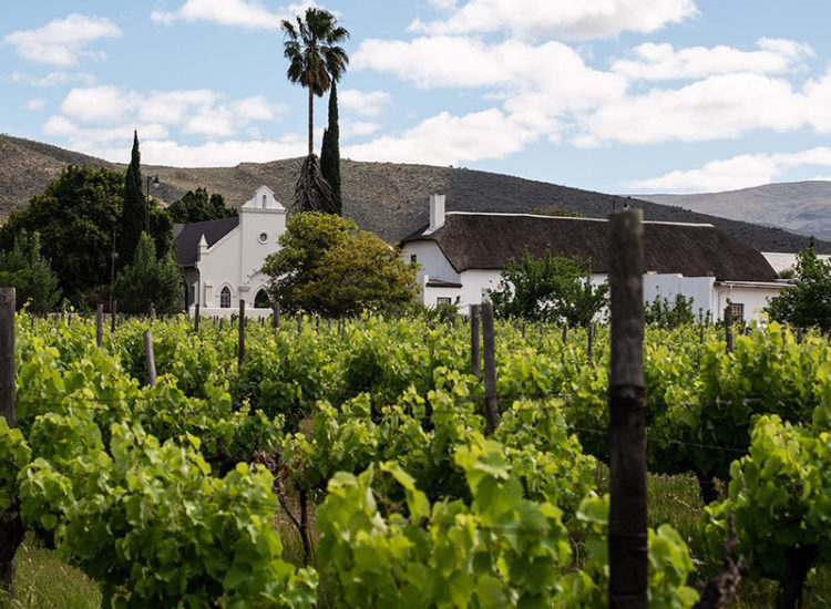 The Vineyard Country House Montagu