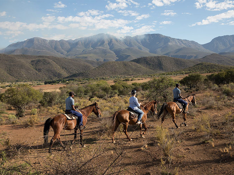 Horse riding in the Klein Karoo