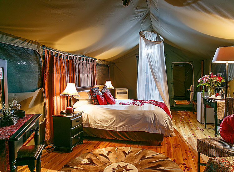 Luxury Tented Accommodation