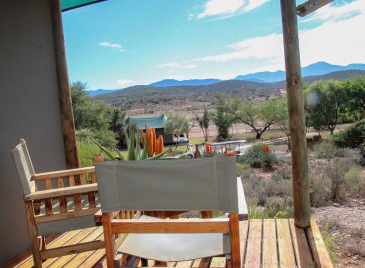 Buffelsdrift Game Lodge Luxury Tent View