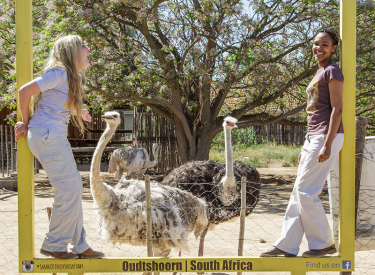 Posing with our ostriches